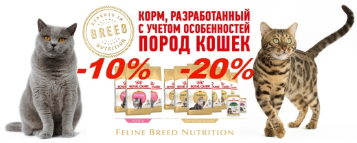 Royal Canin  для породистых кошек - 10-20% ( до конца октября)