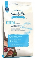 Sanabelle Kitten