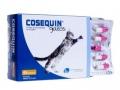 Bioiberica Cosequin Capsules Cat