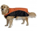 Dog Coat Sprint Orange