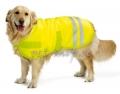 Dog Coat Teddie