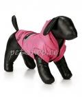 Dogs Company, roosa