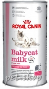 Royal Canin Feline Health Nutrition Babycat Milk