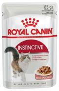 Royal Canin Feline Instinctive in Gravy 12*85g