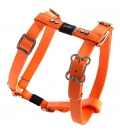Rogz Luna lapz XS 22-34cm - orange