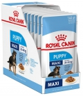 Royal Canin Maxi Puppy 140g*12tk