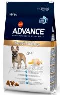 Advance Dog French Bulldog