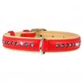 Collar Brilliance ошейник, 21-27 cm, красный