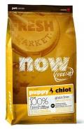 NOW Fresh Puppy Recipe Grain Free Turkey, Salmon, Duck - 11,3kg