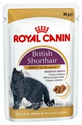 Royal Canin British Shorthair 85g x 12tk